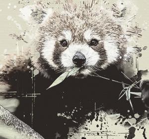 <span>Red Panda Poster</span><i>→</i>